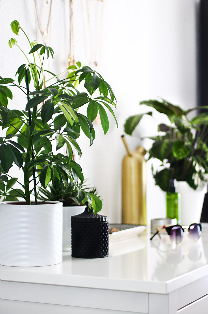 Schlafzimmer Inspiration mit Pflanzen